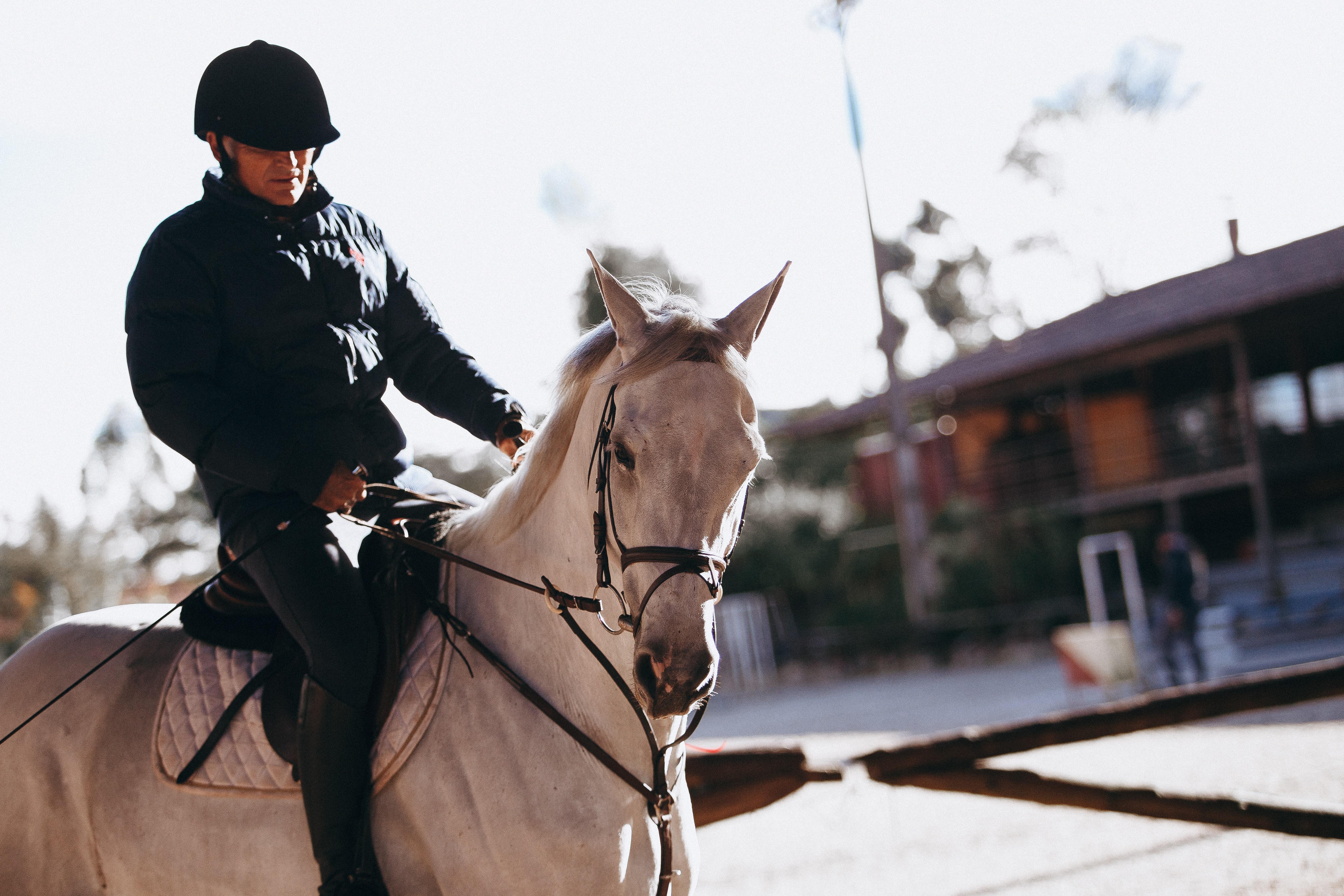 Sprzęt jeździecki sklep